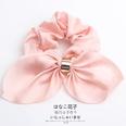 NHOF146339-Pink