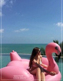 Inflatable Swan Flamingo Unicorn Pegasus Mounting Pizza Floating Row NHWW142477