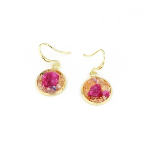 Imitated crystal bud cluster round earrings NHGO143201