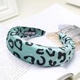 NHOU229547-Green-leopard-sponge-headband