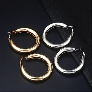 Fashion alloy hoop earrings alloy alloyen NHPF147210's discount tags
