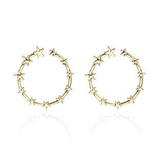 Fashion simple alloy star ring hoop earrings NHPF147226's discount tags