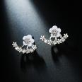 NHPF205109-Silver-daisy