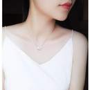 Stylish and simple titanium steel swan necklace NHIM152025