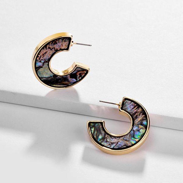 Natural abalone shell paper acrylic sheet alloy earrings NHLU152613