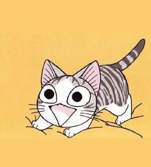 Broche de gato versátil de moda de diamantes NHNT154624