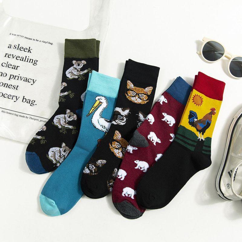 New cartoon animal koala cotton socks NHZG150181