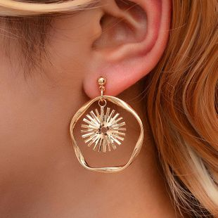 Simple geometric sun flower wave alloy earrings NHDP150515's discount tags