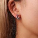 Korean version of Xingyue earrings shiny stars moon diamond asymmetric earrings diamond earrings NHCU194832