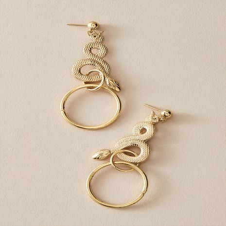 hot-selling fashion retro exaggerated long snake-shaped earrings NHKQ267922's discount tags
