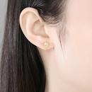 S925 sterling silver zircon earrings  NHLE275305