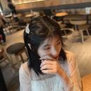 einfacher koreanischer einfacher Seitenclip NHOF265307