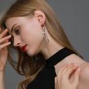 retro  punk style rock long tassel  earrings NHDP265349