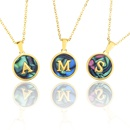Stainless Steel Round Shell 26 Letter Necklace  NHBP265781