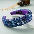 NHLN1167945-purple