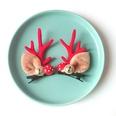 NHSA1250122-5-Mushroom