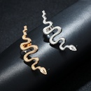 fashion exaggerated snakeshaped earrings NHYE281794