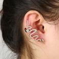 NHYE1255513-Right-ear-silver