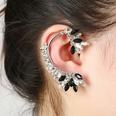 NHYE1255632-Right-ear-silver