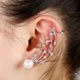 NHYE1255604-Left-ear-silver