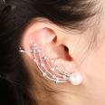 NHYE1255606-Right-ear-silver