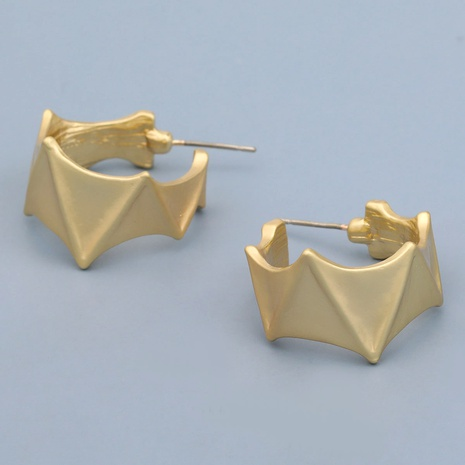 irregular alloy fashion earrings  NHJE283647's discount tags