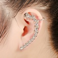 NHYE1271370-Left-ear-silver