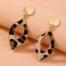 metal leopard geometric pendant earrings  NHAN278780