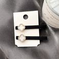 NHHI1305474-Price-of-a-pair-of-cloth-clip