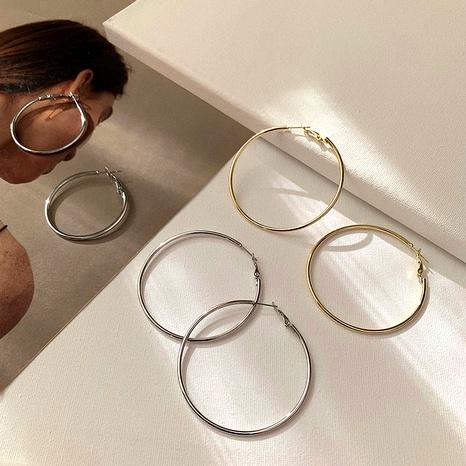 Pendientes de círculo grande con aguja de plata s925 NHPF294806's discount tags