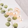 NHAQ1336594-Five-pearl-grippers