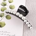 NHAQ1336596-Large-black-pearl-clip