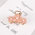 NHAQ1336706-Pearl-pink