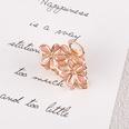 NHAQ1336710-Flowers-pink
