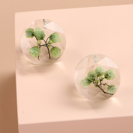 creative dried flower earrings  NHAN298873's discount tags