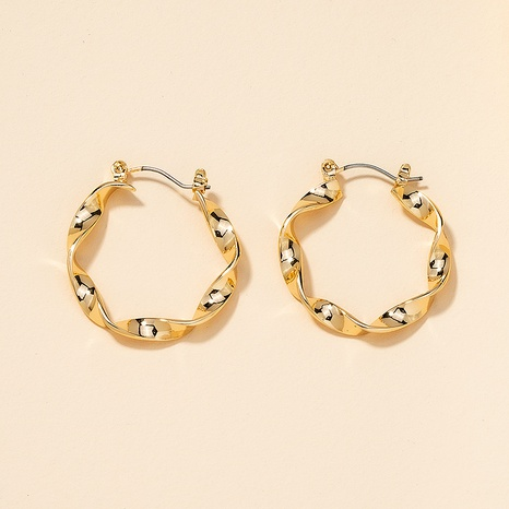 Metal Twisted Hoop Earrings  NHGU301659's discount tags