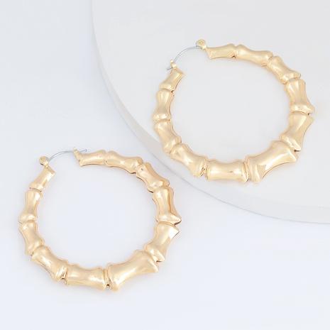 simple alloy earrings  NHJE290508's discount tags