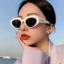 Irregular Cat Eye Retro Sunglasses  NHKD302182