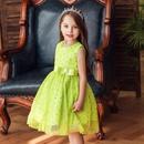 New childrens costumes pettiskirt girls dresses princess dresses for children NHTY198307