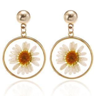Sweet Little Daisy Earring Korean Fashion Simple Transparent Dried Flower Circle Earrings NHPF196114's discount tags