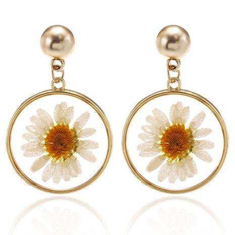 Sweet Little Daisy Earring Moda Coreana Simple Transparente Secado Flor Círculo Pendientes NHPF196114's discount tags
