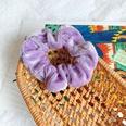 NHOF540303-Rebate--6-Violet