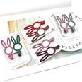 NHSA566536-Rabbit-mixed-color-pair