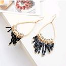 Fashion jewelry Korean fashion LO bead curtain earrings NHSC202444