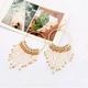 Fashion jewelry Korean fashion LO bead curtain earrings NHSC202443