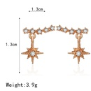 Korean diamond earrings retro earrings long gold tassel drop earrings female NHPF203611