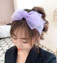 NHHD577939-purple
