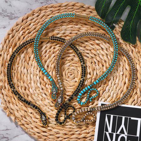 Nouvelle mode acrylique sombre collier de serpent exagéré en gros NHJQ204721's discount tags