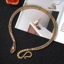 Nouvelle mode acrylique sombre collier de serpent exagr en gros NHJQ204721