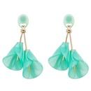 Explosion earrings wholesale fashion flower earrings acrylic wild earrings NHYT199919